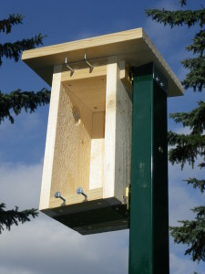 Nest box opened